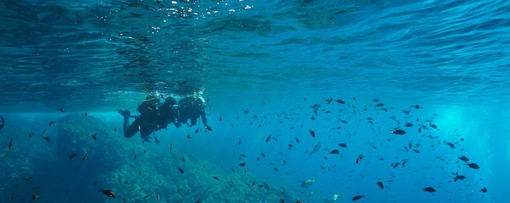Diving Angel - Bapteme Plongée à Tenerife